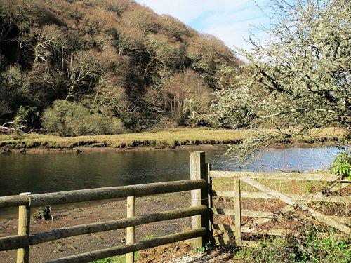 Lopwell Dam nature reserve