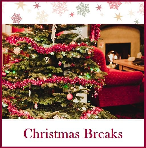 Christmas Breaks at The Bedford Hotel