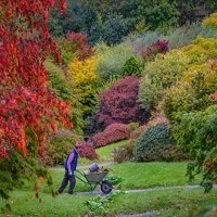 Autumn at The Garden House