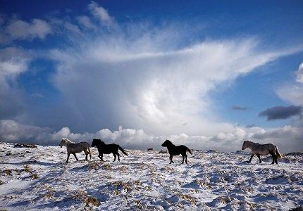 Dartmoor Photography Break