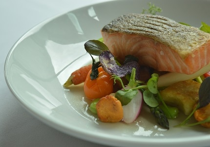 Salmon dish for lunch