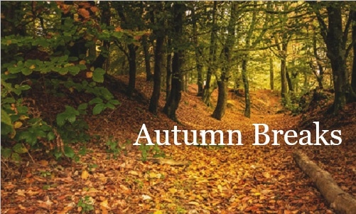 Autumn Breaks at The Bedford
